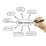 Elemento de la escritura de la mano de las mujeres del concepto del TQM para el concepto a del negocio imagen de archivo libre de regalías
