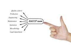 Elemento de la escritura de la mano de las mujeres del equipo de HACCP para el concepto del negocio Imagen de archivo