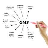 Elemento de la escritura de la mano de las mujeres del GMP en el fondo blanco para utilizado Imagen de archivo