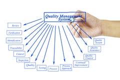 Elemento de la escritura de la mano de las mujeres del sistema de gestión de la calidad para el busi Imagen de archivo