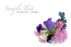 Elemento de la esquina del fondo floral Foto de archivo libre de regalías
