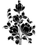 Elemento de lujo del diseño floral Foto de archivo