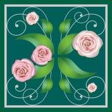 Elemento de um ornamento da flor, rosas Foto de Stock Royalty Free