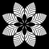Elemento decorativo del diseño Modelo floral Fotos de archivo