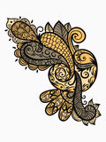 Elemento del diseño de Paisley Fotografía de archivo libre de regalías