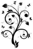 Elemento del diseño floral. Ilustración del vector ilustración del vector