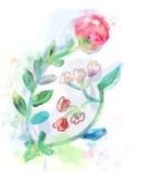 Elemento del diseño floral para la tarjeta o el inviration Fotos de archivo