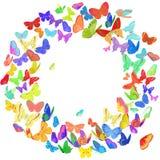 Elemento del diseño de la guirnalda de la mariposa en colores brillantes Foto de archivo libre de regalías
