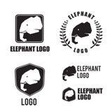 Elemento del logotipo de la silueta del elefante, diseño gráfico para el logotipo y Br Imágenes de archivo libres de regalías
