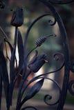 Elemento del ornamento de la puerta Fotos de archivo