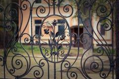 Elemento del ornamento de la puerta del hierro Fotos de archivo