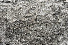 Elemento della decorazione della parete di struttura del fondo vecchio Copi il testo dello spazio Fotografia Stock
