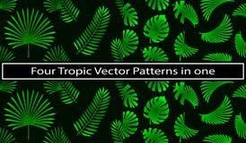 4 in 1 elemento delle foglie di palma e tropicale come modelli verdi determinati illustrazione vettoriale
