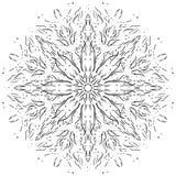 Elemento desenhado à mão intrincado do design web Fotografia de Stock