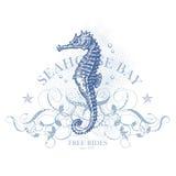 Elemento di disegno di estate del Seahorse Fotografia Stock