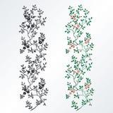 Elemento di disegno floreale Fotografia Stock