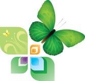 Elemento di progettazione di estate e della primavera Fotografia Stock