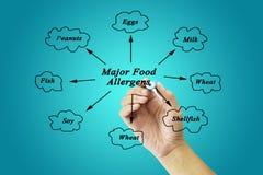 Elemento di scrittura della mano delle donne degli allergeni importanti dell'alimento (latte, uova, Immagine Stock
