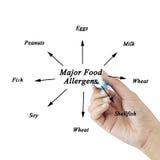 Elemento di scrittura della mano delle donne degli allergeni importanti dell'alimento (latte, uova, pesce, crostacei, frutta a gu Immagini Stock