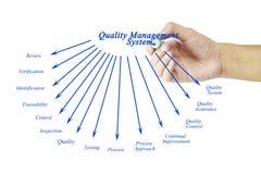 Elemento di scrittura della mano delle donne del sistema di gestione della qualità per il busi fotografie stock