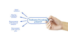 Elemento di scrittura della mano delle donne delle procedure di verifica del HACCP f immagini stock libere da diritti