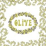 Elemento di vettore dell'illustrazione di verde dell'etichetta dell'olio d'oliva Fotografie Stock
