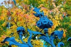 Elemento do metal da arquitetura no formulário da flor na cerca do jardim de Mikhailovsky em St Petersburg, Rússia - opinião do o Imagem de Stock