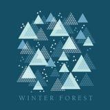 Elemento do projeto da geometria do inverno do conceito Fotografia de Stock