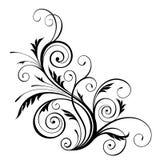 Elemento do projeto floral do vetor Imagem de Stock Royalty Free