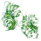Elemento do projeto floral do vetor Foto de Stock Royalty Free