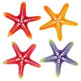 Elemento dos peixes da estrela ilustração do vetor