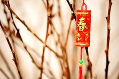 Elemento durante il nuovo anno cinese Immagini Stock Libere da Diritti