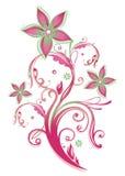 Elemento floral Imágenes de archivo libres de regalías