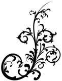 Elemento floral 18 ilustración del vector