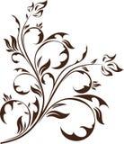 Elemento floral Fotografia de Stock Royalty Free