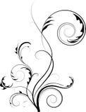 Elemento floral abstracto para el diseño Imágenes de archivo libres de regalías