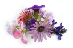 Elemento floral del diseño del fondo Foto de archivo