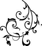 Elemento floral do projeto Imagens de Stock Royalty Free
