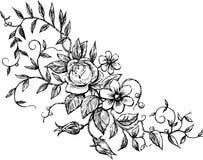 Elemento floreale decorativo Fotografie Stock Libere da Diritti