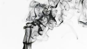 Elemento fluido variopinto astratto del fumo stock footage