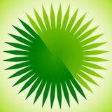 Elemento geométrico del círculo de líneas radiales Estallar las líneas combinación libre illustration
