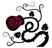Elemento grafico decorativo del fiore rosa dell'ornamentale Immagine Stock