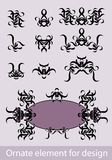 Elemento ornamentado para o projeto Imagem de Stock Royalty Free