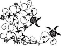 Elemento para el diseño, vector   Fotografía de archivo