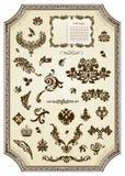 Elemento reale di disegno dell'annata floreale Immagine Stock
