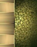 Elemento verde para el diseño Plantilla para el diseño copie el espacio para el folleto o la invitación del aviso, fondo abstract Fotos de archivo libres de regalías