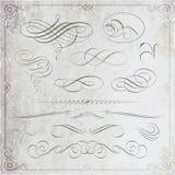 Elementos caligráficos con el fondo de la textura ilustración del vector