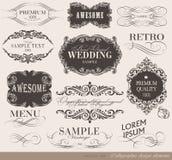 Elementos caligráficos del diseño Foto de archivo libre de regalías