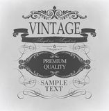 Elementos caligráficos del diseño Imágenes de archivo libres de regalías
