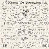 Elementos caligráficos del diseño del vintage del vector y Foto de archivo libre de regalías